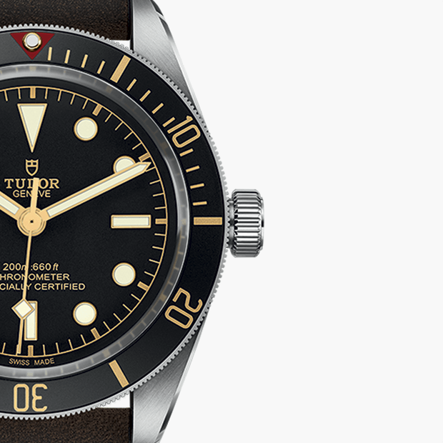 TUDOR BLACK BAY FIFTY-EIGHT SAATİNİZİ AYARLAYIN - M79030N-0002