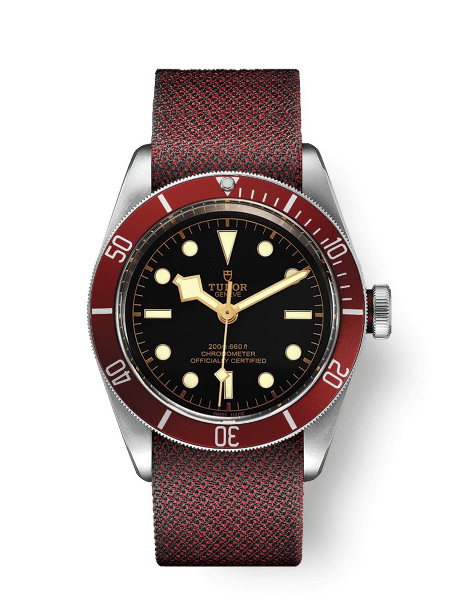 WATCH TUDOR BLACK BAY - M79230R-0009